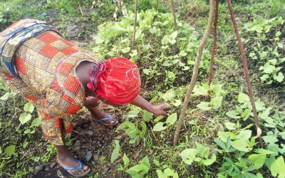 Women fight hunger with agriculture in Congo